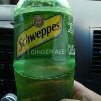 Schweppes® Ginger Ale uploaded by Susan C.