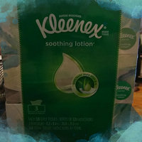 Kleenex Lotion Facial Tissue with  Aloe & Vitamin E uploaded by Bev M.
