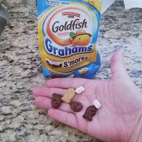 Goldfish® S'mores Adventures Baked Graham Snacks uploaded by Dezirae N.