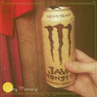 Java Monster Mean Bean uploaded by Ashlee F.
