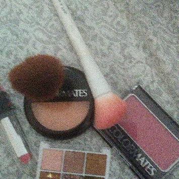 Photo of Colormates Blush & Brush Blushed Pack of 4 uploaded by Susan C.