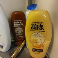 Garnier Whole Blends Coconut Oil & Cocoa Butter Extracts Smoothing Leave-In Conditioner uploaded by Gail F.