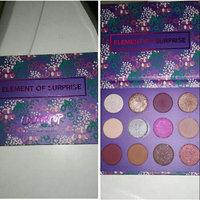 ColourPop Element of Surprise Pressed Powder Shadow Palette uploaded by Erika K.
