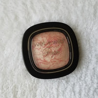 wet n wild To Reflect Shimmer Palette uploaded by Brianna J.