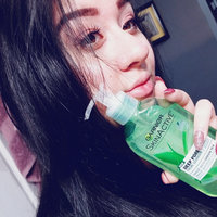 Garnier SkinActive Deep Pore Face Wash with Green Tea uploaded by Amanda B.