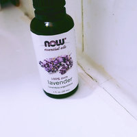 NOW Foods - Lavender Oil - 4 oz. uploaded by Arma A.