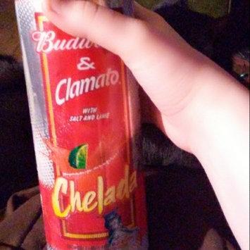 Photo of Budweiser Clamato & Chelada Beer uploaded by joyce p.