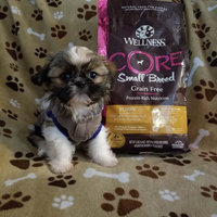 Wellness Core Grain Free Small Breed Adult Dog Food uploaded by Chelsey S.