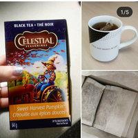 Celestial Seasonings® Sweet Harvest Pumpkin Black Tea uploaded by Laura P.