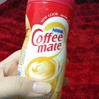 Coffee-mate® Powder Hazelnut uploaded by laveezza K.
