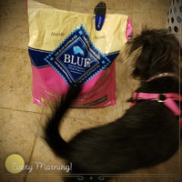 THE BLUE BUFFALO CO. BLUE™ Life Protection Formula® Chicken and Brown Rice Recipe For Small Breed Adult Dogs uploaded by Jessica m.