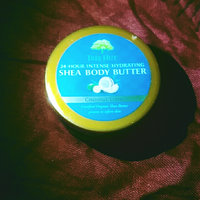 Tree Hut Coconut Lime Shea Body Butter uploaded by Heather S.