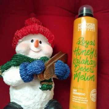 Photo of Not Your Mother's® Naturals Royal Honey & Kalahari Desert Melon Repair + Protect Leave-In Conditioner uploaded by Andrea W.