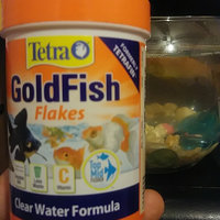 Tetra TetraFin Goldfish Flakes uploaded by Jamika R.