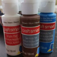 Satin Acrylic Paint, 2 in Brown by Craft Smart uploaded by Kailey R.