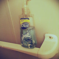 Dial® Antibacterial Liquid Hand Soap Gold uploaded by Brianna C.