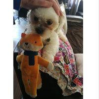 BarkBox uploaded by Carolyn W.