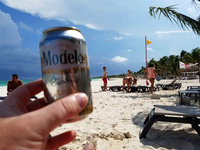 Modelo Especial Beer uploaded by Patti D.