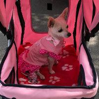 BestPet Classic 4 Wheel Pink Pet Stroller uploaded by Yelena M.