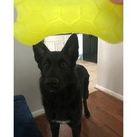 Petmate 52038 Squeaky Treat Dog Toy - Quantity 1 AP52038 uploaded by Trigracavick✨💋 L.
