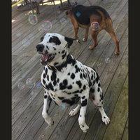 Pet Botanics Training Rewards Dog Treats uploaded by Jessica S.