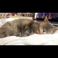 TEMPTATIONS™ Classic Treats For Cats Seafood Medley Cat Treats uploaded by Dana R.