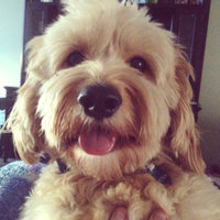 Fruitables Dog Treats Pumpkin & Blueberry 7 oz uploaded by Amanda F.