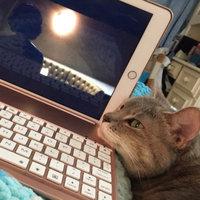TEMPTATIONS™ MixUps Treats For Cats Surfer's Delight Cat Treats uploaded by Dana R.