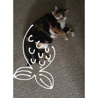 Friskies® Pull'n Play Pack String Cat Treats & Wobbert Toy uploaded by Valdya B.