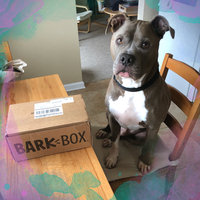 BarkBox uploaded by Eugenia S.