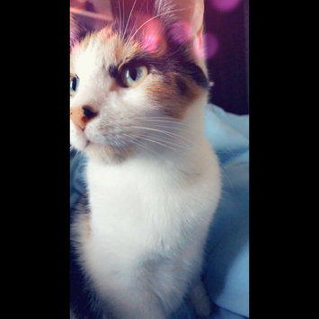 Photo uploaded to #FurryFriends by Maria Elena L.