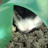 Absorption Corp Absorption Carefresh Pet Bedding Ultra 10 Liters - 118023 uploaded by JORIANNE K.