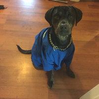Hartz Mountain 97928 Groomer's Best Oatmeal Dog Shampoo uploaded by tiffanie 😘.