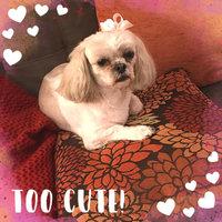 Chi® Oatmeal Dog Shampoo uploaded by Petrina B.
