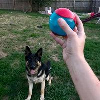 KONG AirDog Squeaker Tennis Ball uploaded by MEAGAN S.