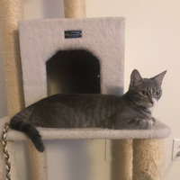 Armarkat Cat Tree uploaded by Rebecca H.