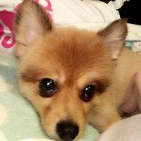 Pedigree® Complete Nutrition Adult Dog Food uploaded by Jessica L.