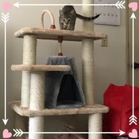 Armarkat Cat Tree uploaded by Theresa O.