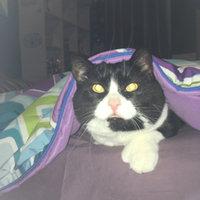 TEMPTATIONS™ Classic Treats For Cats Tasty Chicken Cat Treats uploaded by Sara L.