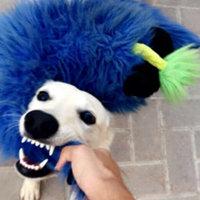 FURminator  deShedding Tool for Medium Dogs uploaded by Salama A.
