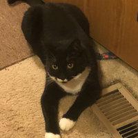 TEMPTATIONS™ MixUps Treats For Cats Surfer's Delight Cat Treats uploaded by Julianna J.
