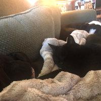 TEMPTATIONS™ Classic Treats For Cats Catnip Treats uploaded by Kristen D.