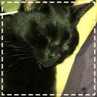 TEMPTATIONS™ Classic Treats For Cats Tasty Chicken Cat Treats uploaded by Karli C.