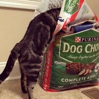 PURINA® DOG CHOW® Complete Adult With Real American-Raised Chicken uploaded by Brittney B.