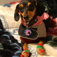 Rachael Ray™ Nutrish® Tasty Real Meat Treats for Dogs Deli Cuts™ uploaded by Odalys P.