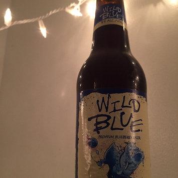 Wild Blue  Beer 12 Oz Glass Bottle uploaded by Elisa R.