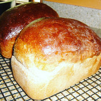 Fleischmann's® RapidRise™ Highly Active Yeast 4 oz. Jar uploaded by Carolyn M.