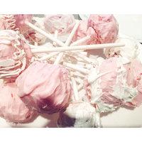 Wilton Lollipop Sticks 4