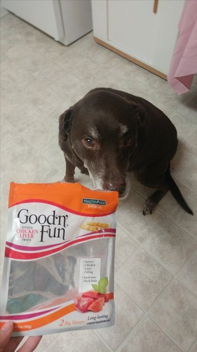Good 'n' Fun Stuffed Liver Twists - 6 PK uploaded by Sahra G.