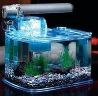 TOM Aquarium Deco Kit - 3gal Aquarium Kit - PC Lighting & Filter uploaded by Jodi L.